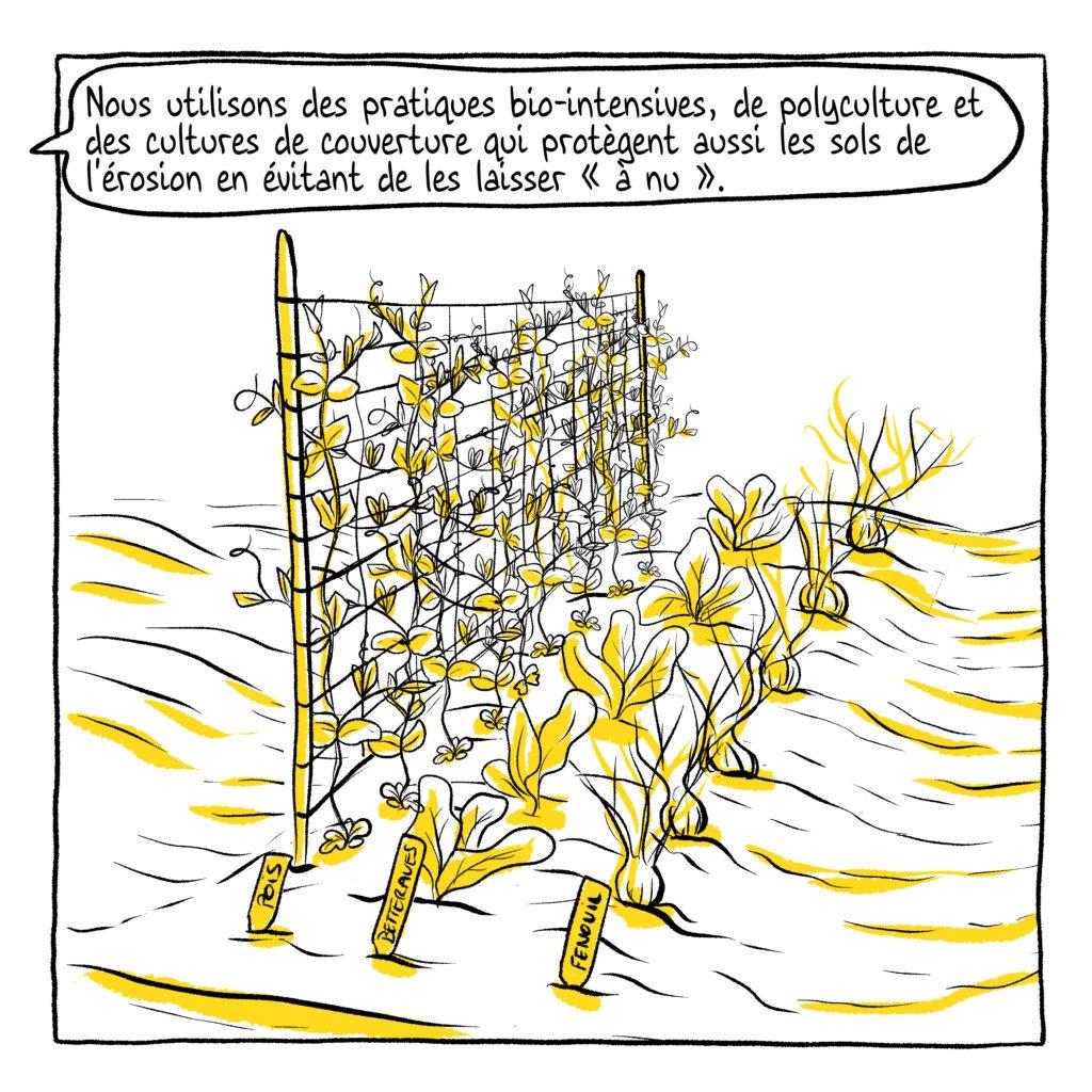 Santé des sols BD - mélika illustration