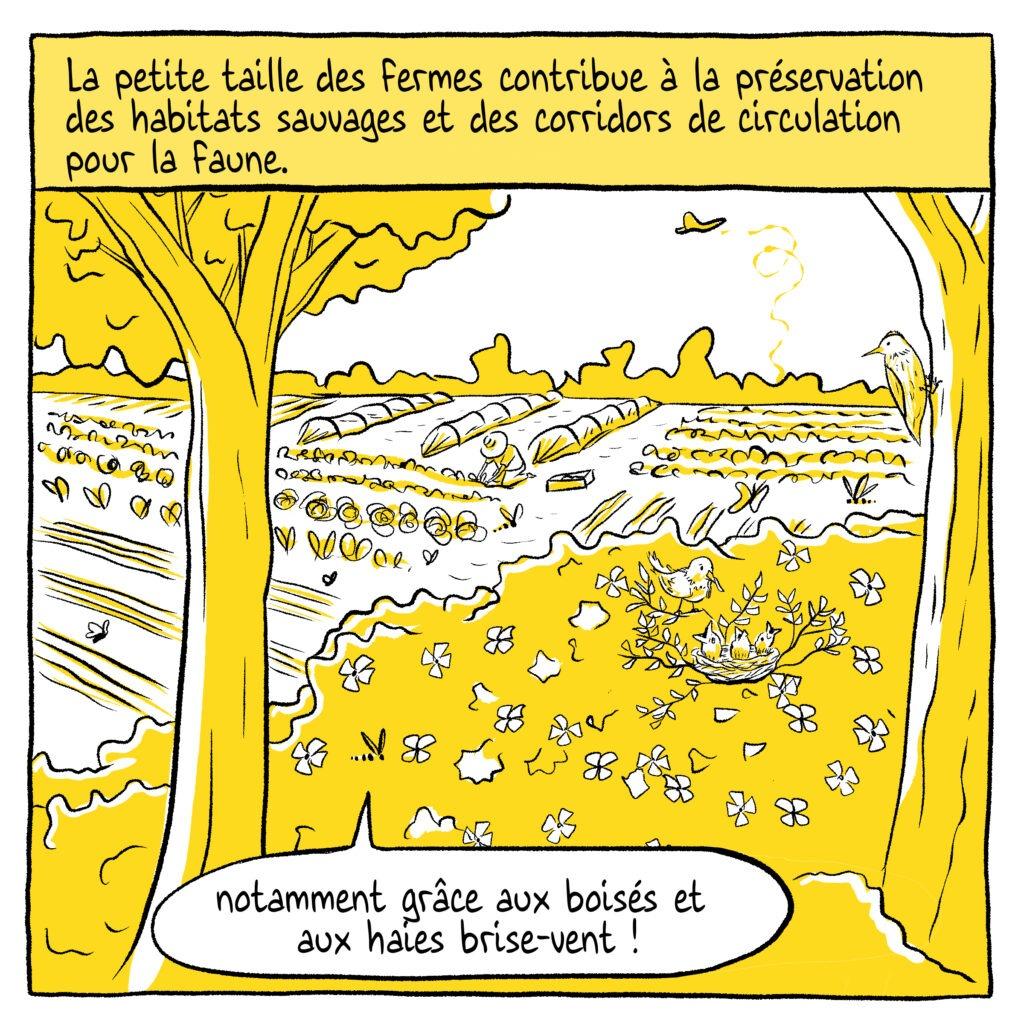 Case5 Écosystèmes BD - MelikaIllustration