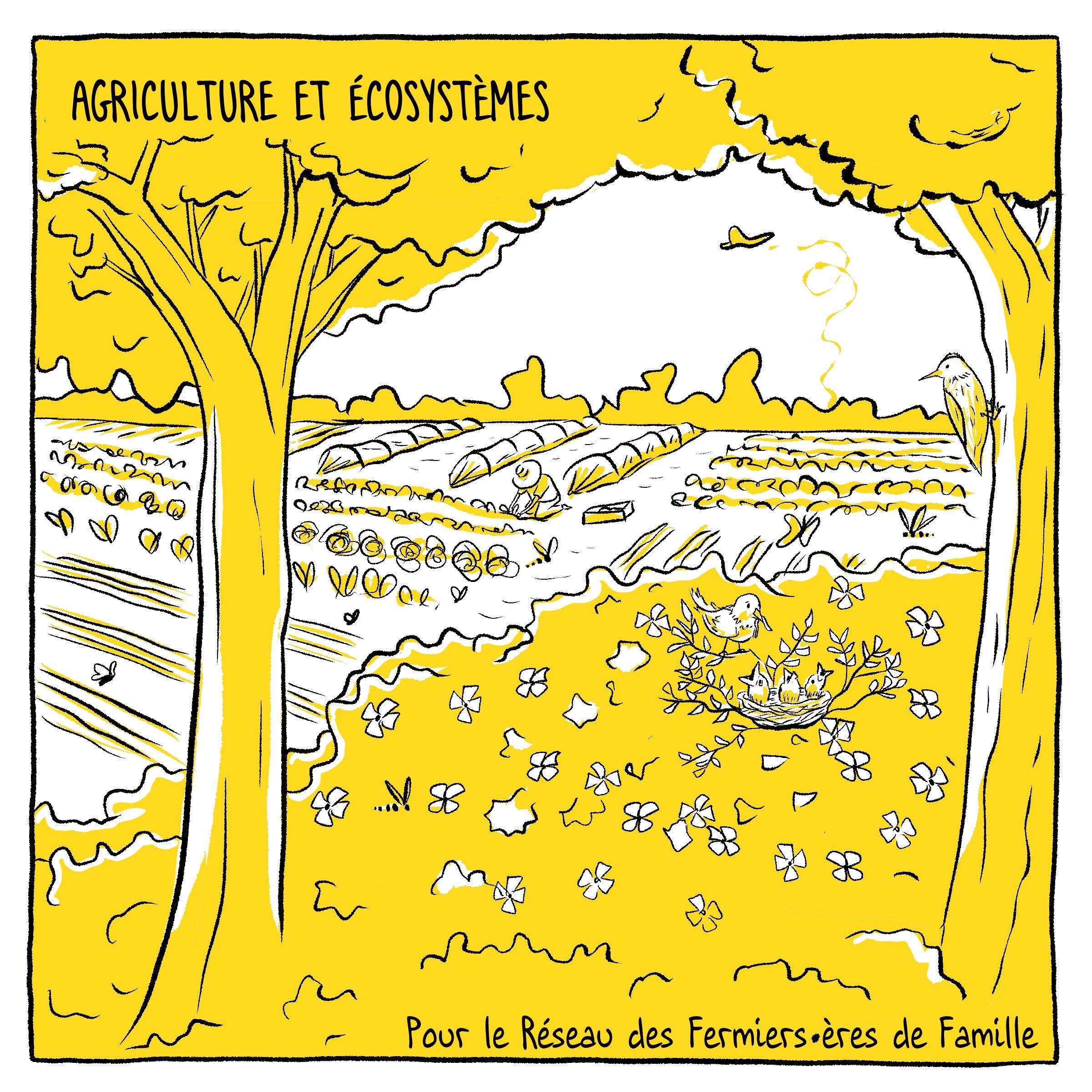 Agriculture et écosystèmes - MelikaIllustration bd
