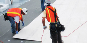 single ply roofing case study