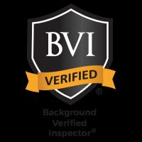 BVI - Inspector logo