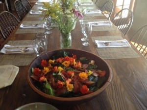 Our finished product:  a garden salad from the garden (literally)