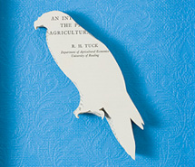 Silent Gathering, Wedge Tail Eagle, 2009, hand cut paper & wallpaper, 33 x 28 cm