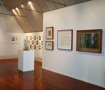 Into the Woods, NG Art Gallery, Sydney