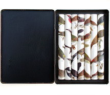 Cacophony Study, 2008, rolled paper & tobacco tin, 14 x 11 x 2 cm