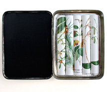 Collate, 2008, rolled paper & tobacco tin, 10 x 8 x 1.8 cm