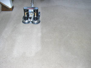 Carpet 3