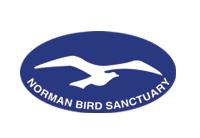 normanbird_sm
