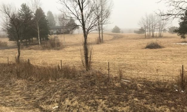 Uxbridge Approves Rezoning For Grain Mill With Many Conditions
