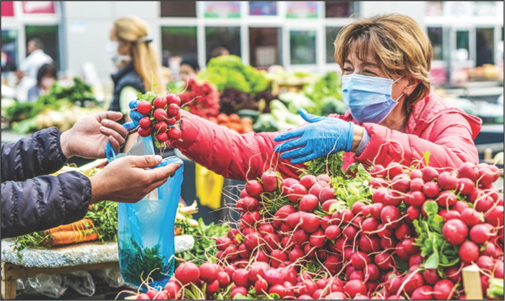 Taking Action for Ontario's Tender Fruit Growers
