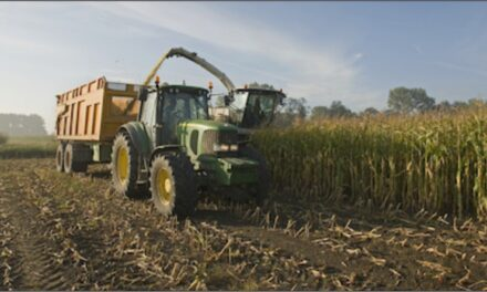 Ontario Helps Farmers and Agri-food Operators Keep Workers Safe During COVID-19