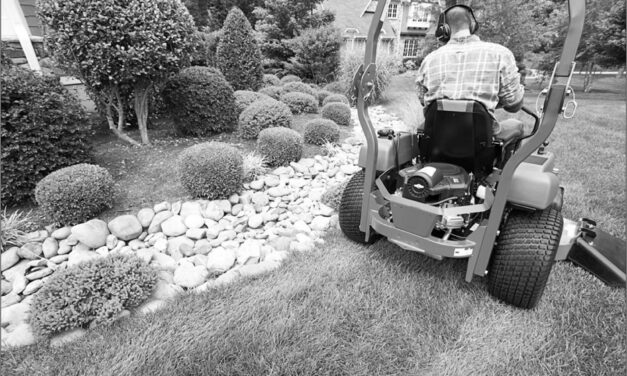 Spring Lawn Equipment: Get Ready for Backyarding in High Style This Year
