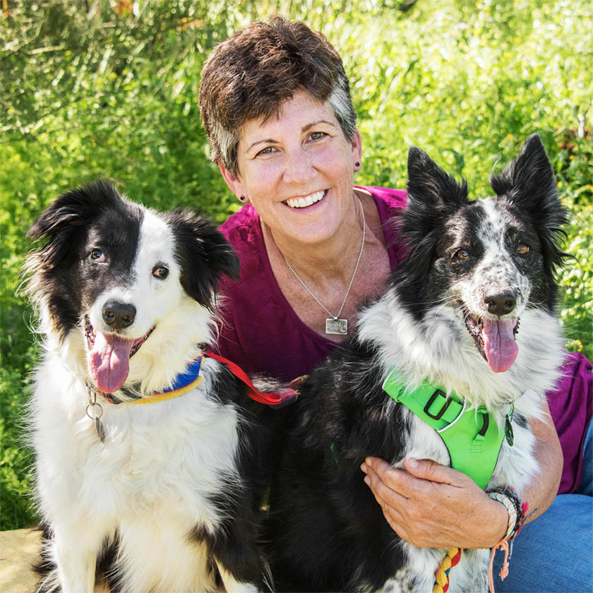 Marilee Cole Cheeky Dog Obedience Dog Training Barn Hunt AKC Good Citizen Positive Reinforcement In Home Puppy Classes 85331