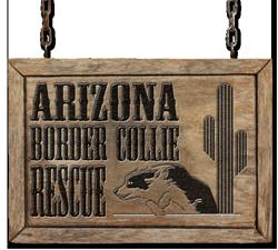 Arizona Border Collie Rescue
