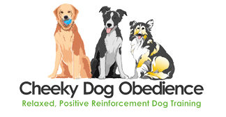 Cheeky Dog Obedience