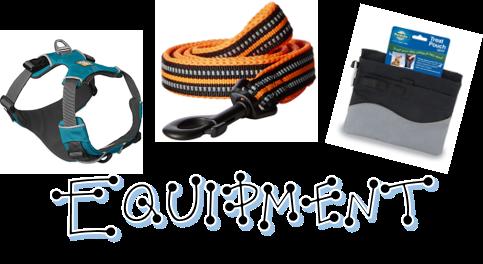 Equipment Button