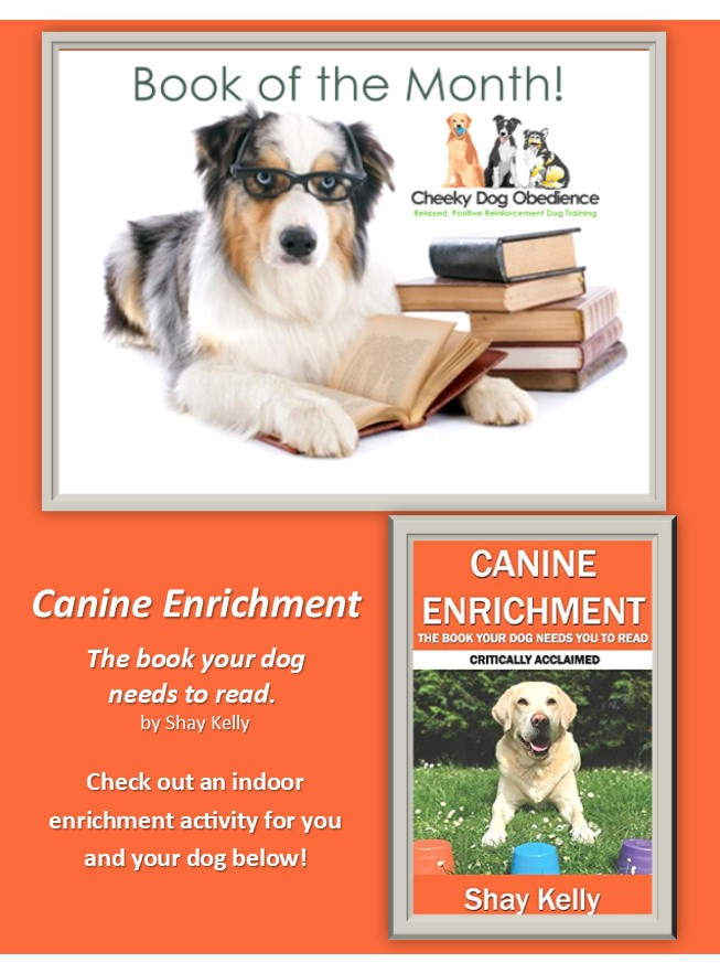 Canine-Enrichment-Book-Dog-Obedience
