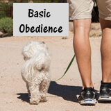 Basic Obedience Payment button