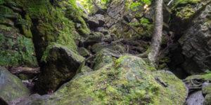 Nottawasaga Lookout Provincial Nature Reserve