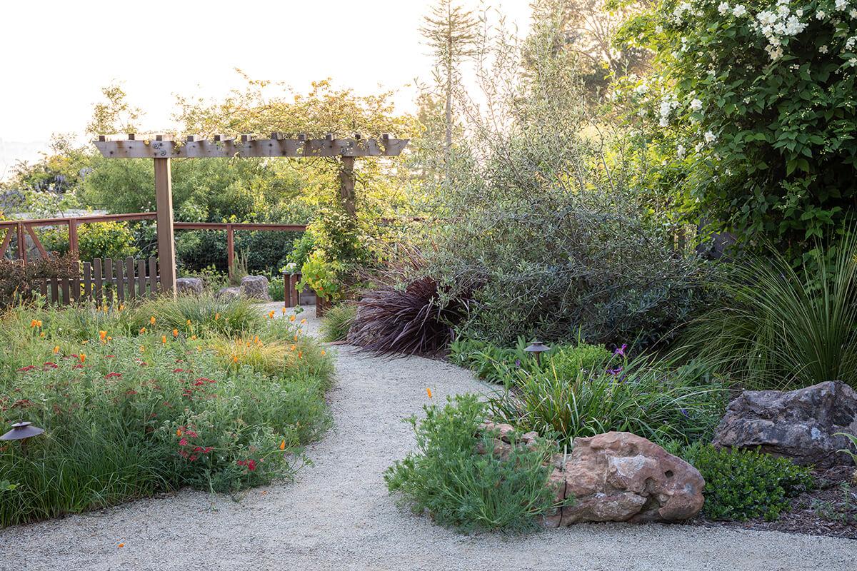 2-berkeley-backyard