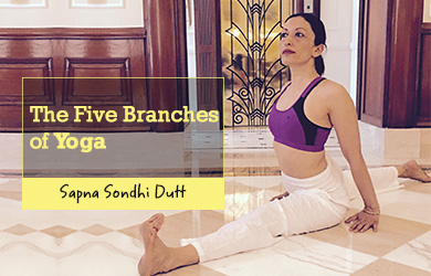 5 branches yoga