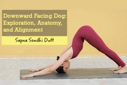 Downward Facing Dog: Exploration, Anatomy, and Alignment