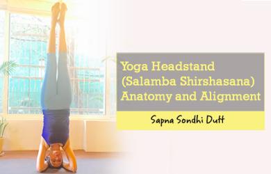 Yoga-Headstand-Salamba-Shirshasana-Anatomy-and-Alignment
