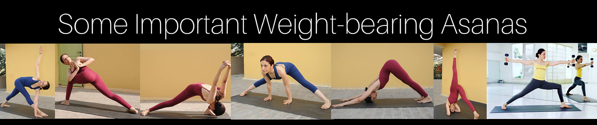 some important weight bearing asanas