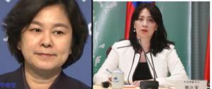 华春莹与台湾发言人欧江安