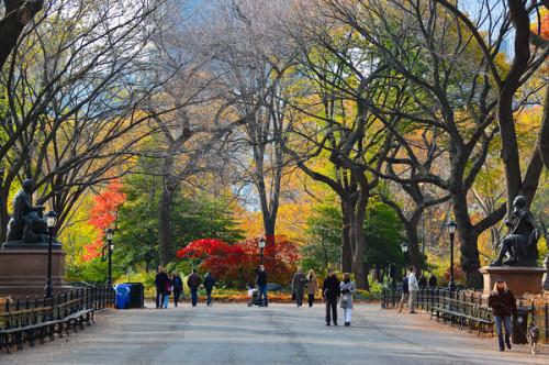 NYC fall