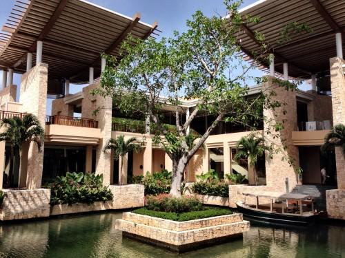 The banyan tree at the Banyan Tree
