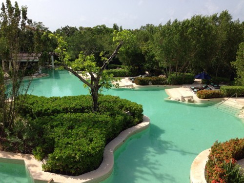 Beautiful Banyan Tree pool