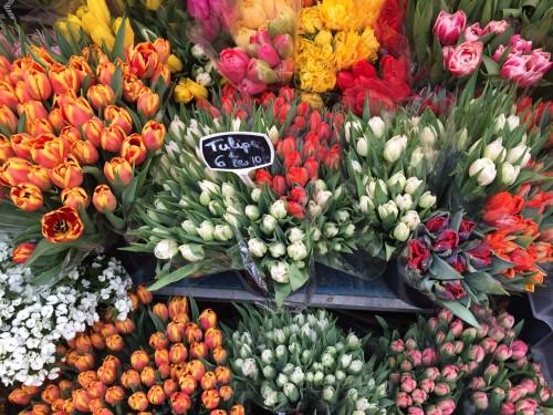 Cours Saleya outdoor market in Nice