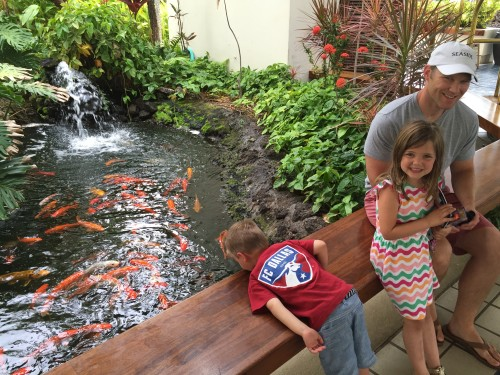 Mauna Lani Bay Hotel & Bungalows -kids love the koi ponds!