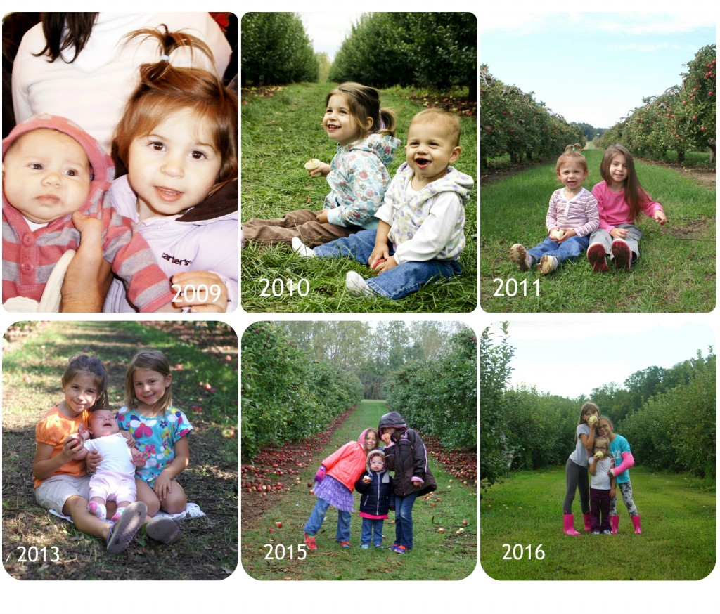 I take a picture of my children at the apple orchard each year.