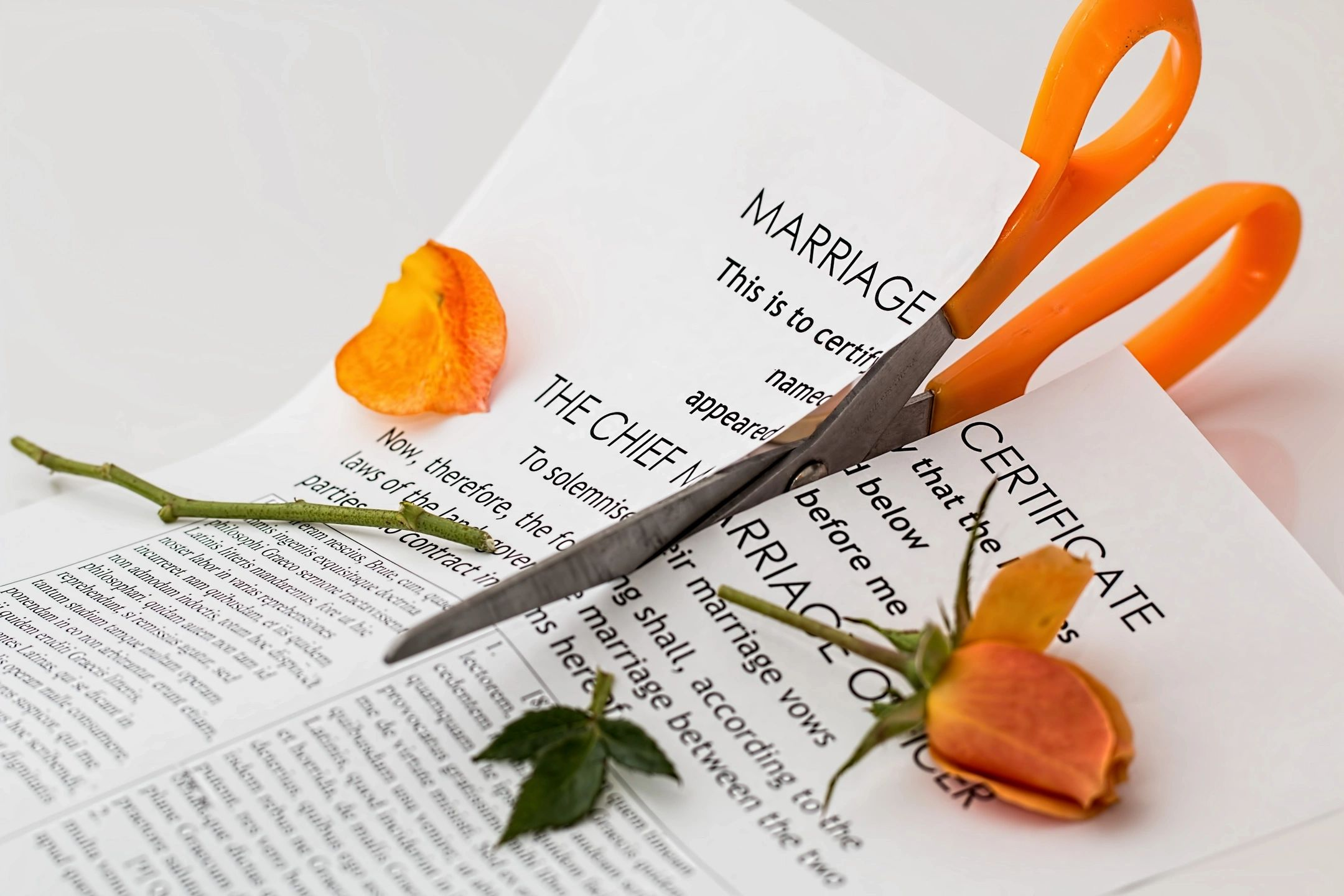 Marriage certificate being cut in half