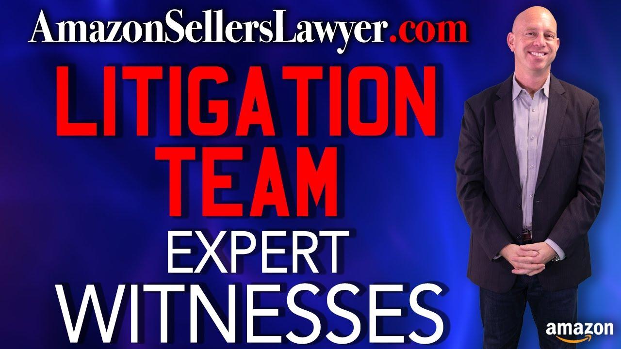 litigation witnesses