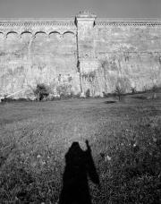Ghostly-Shadow-by-Dam