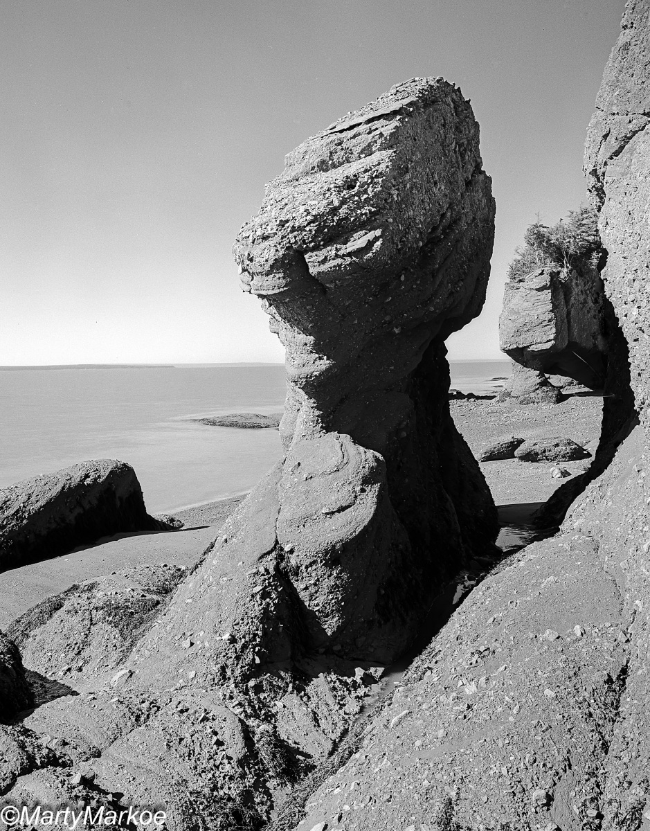 Dinosaur-Rock-Bay-of-Fundy
