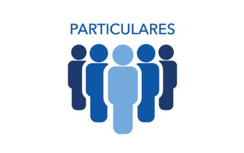 particulares-1