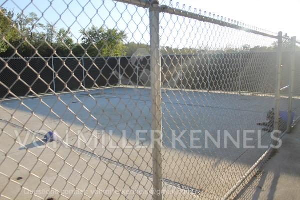 VonMillerKennels_Facility_watermarked_2