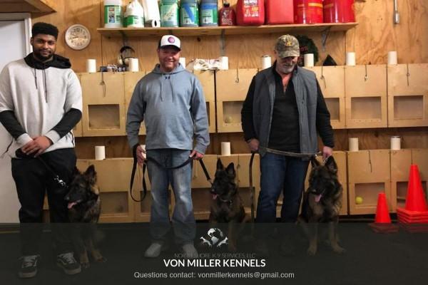 VonMillerKennels_training