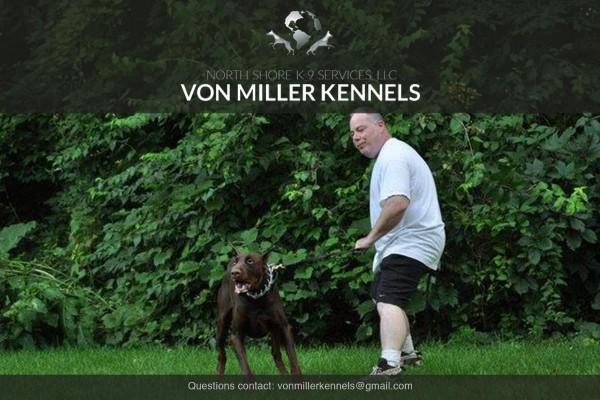 VonMillerKennels_training11