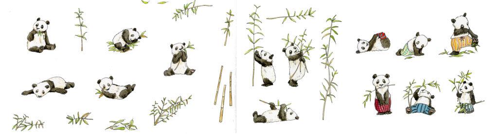 Pandas by Anita Jeram