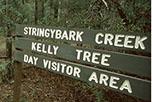 Stringybark Creek