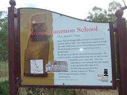 AVENEL COMMON SCHOOL