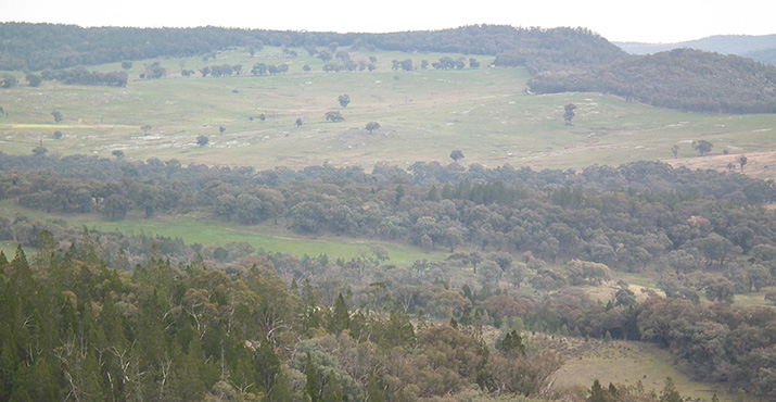 Woolshed Valley View