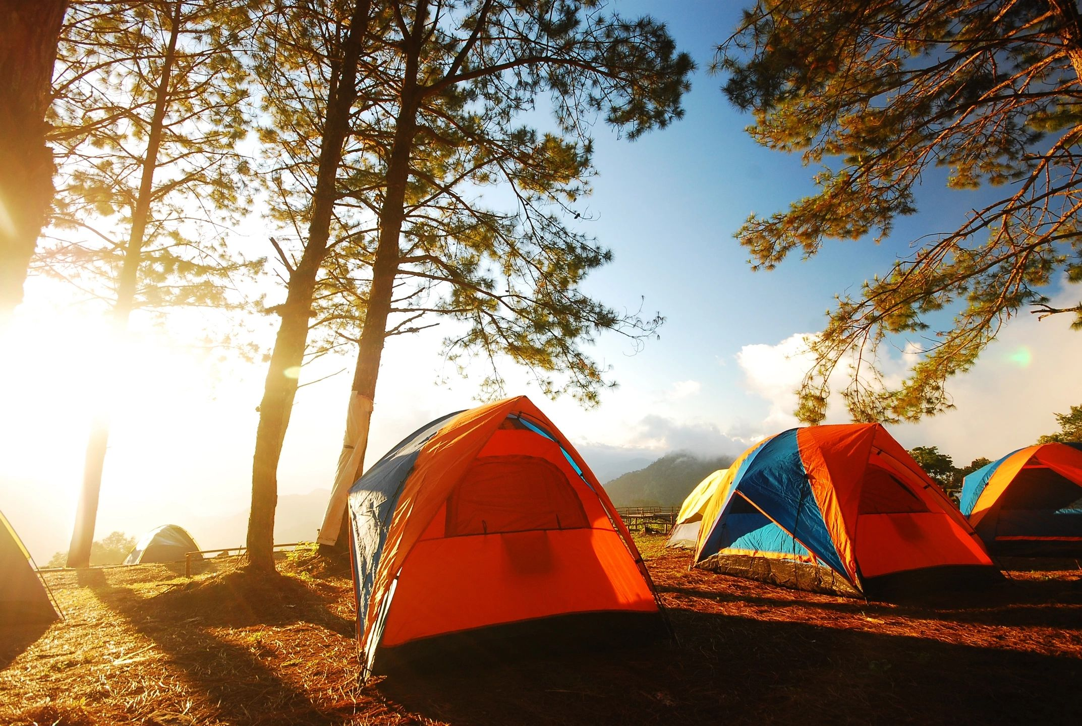 several tents for camping