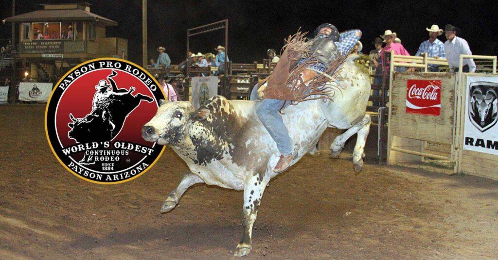 a person riding a bull