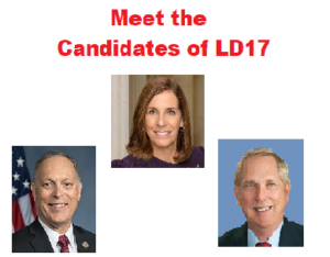 Meet the Candidates of LD17